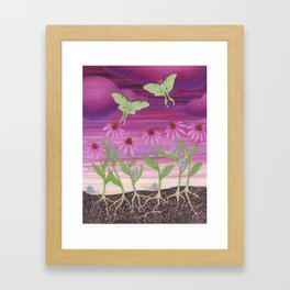 echinacea daydream with luna moths and snails Framed Art Print