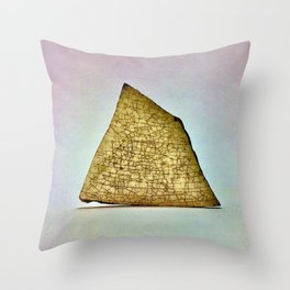 Shard 1 Throw Pillow