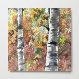 Aspen Trees Panorama Metal Print