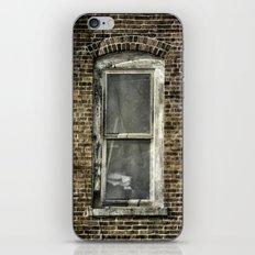 Brick Window 2 iPhone & iPod Skin