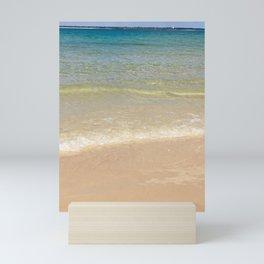 A taste of summer Mini Art Print