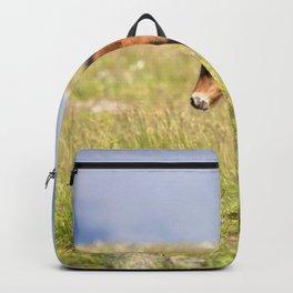 Watercolor Horse 33, Icelandic Pony, Höfn, Iceland, Waitttt! Backpack