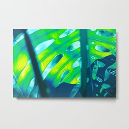 Tropical Exuberance III Metal Print