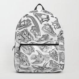 Paleontology Dream Backpack