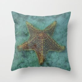 Starfish in the Lagoon Throw Pillow