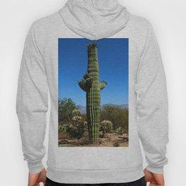 Saguaro Hoody