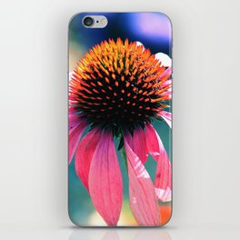The tender life of coneflower iPhone Skin