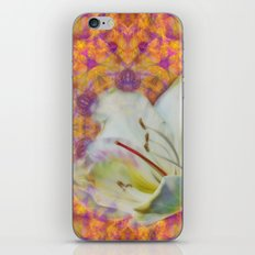 Bauhinia on vibrant kaleidoscope iPhone & iPod Skin