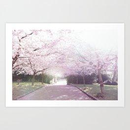 Cherry Blossom Sunday Art Print
