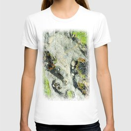 The Seashore Collective T-shirt