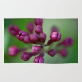 Arboretum Lilac Rug