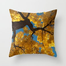 latter hour Throw Pillow