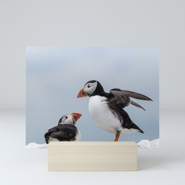 Two Puffins looking at each other Mini Art Print