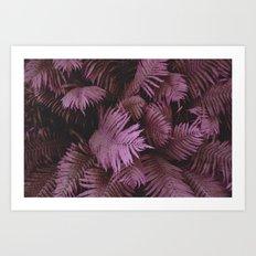 Farn 02 Art Print
