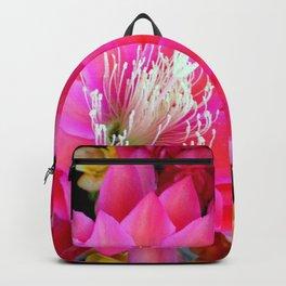 A Sensational Sunrise Backpack