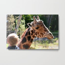 Baringo Giraffe with Child Metal Print
