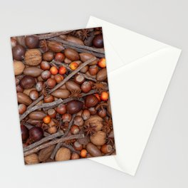 Festive nuts and spices Stationery Cards
