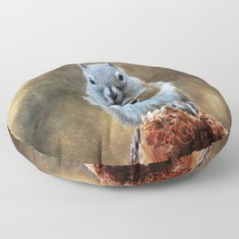 Squirrel with a Pine Cone Floor Pillow