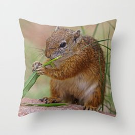 The Squirrel - Africa wildlife Throw Pillow