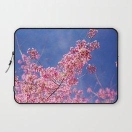 Peach blossom, Peach flower, Photo flower, Photo peach blossom Laptop Sleeve
