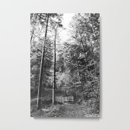 Forest black and white 14 Metal Print