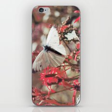 Karkonosze National Park iPhone & iPod Skin