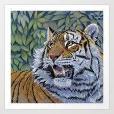 Tiger 807 Art Print
