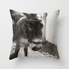 { cobblestone trooper } Throw Pillow