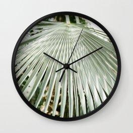Botanical garden close up | Palm leaf detail | Fine art photography print Wall Clock