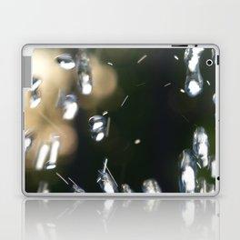 Water Life Laptop & iPad Skin