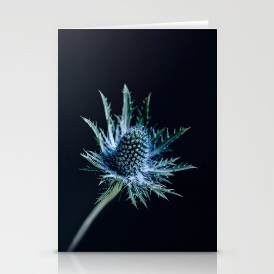 Blue Thistle Stationery Cards