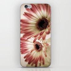 Fading Beauty  iPhone & iPod Skin