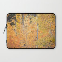 Autumn's Grand Display Laptop Sleeve