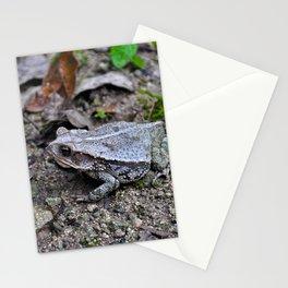 Croak Stationery Cards