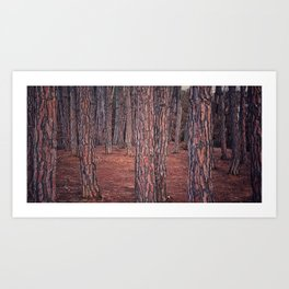Red Forest Art Print