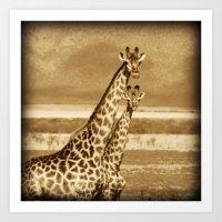 giraffes Art Prints featuring Giraffes by haroulita