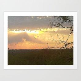 lake sun set Art Print