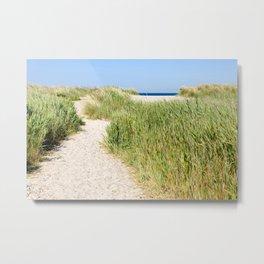 Path to the beach Metal Print