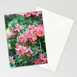 Longwood Gardens Autumn Series 240 Stationery Cards