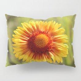 Indian Blanket Flower Pillow Sham