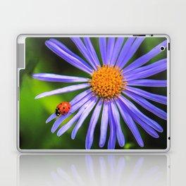 The runway of a ladybird Laptop & iPad Skin