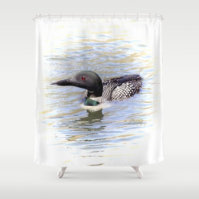 Beautiful Loon Shower Curtain By Michael Johnk Photography