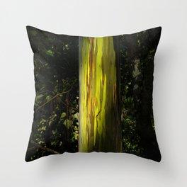 Hawaiian Eucalyptus Tree In Rainbow Colors Throw Pillow