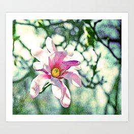 Tiffany Magnolia Art Print