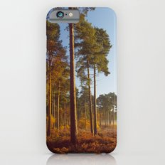 Rising Sun And Tree iPhone 6s Slim Case