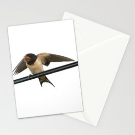 Swallow On A Wire Vector Stationery Cards