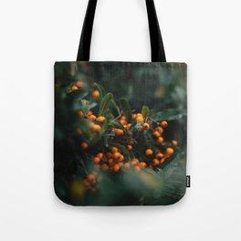 Winter Berries in London Tote Bag