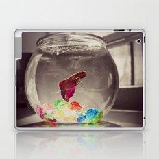 Swim in Color Laptop & iPad Skin