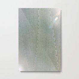 Agave Aglow Metal Print