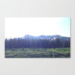 BC Canvas Print